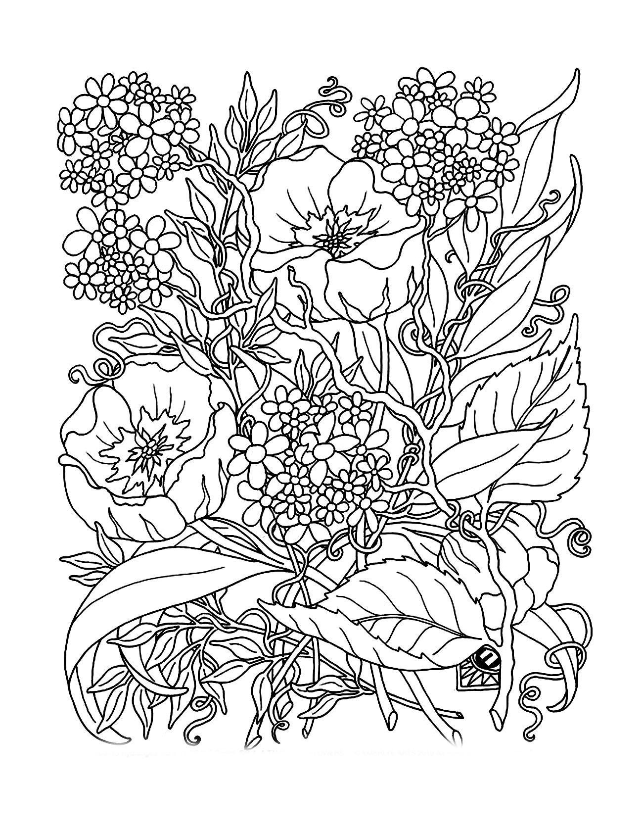 Tranh tô màu các loài hoa đẹp nhất