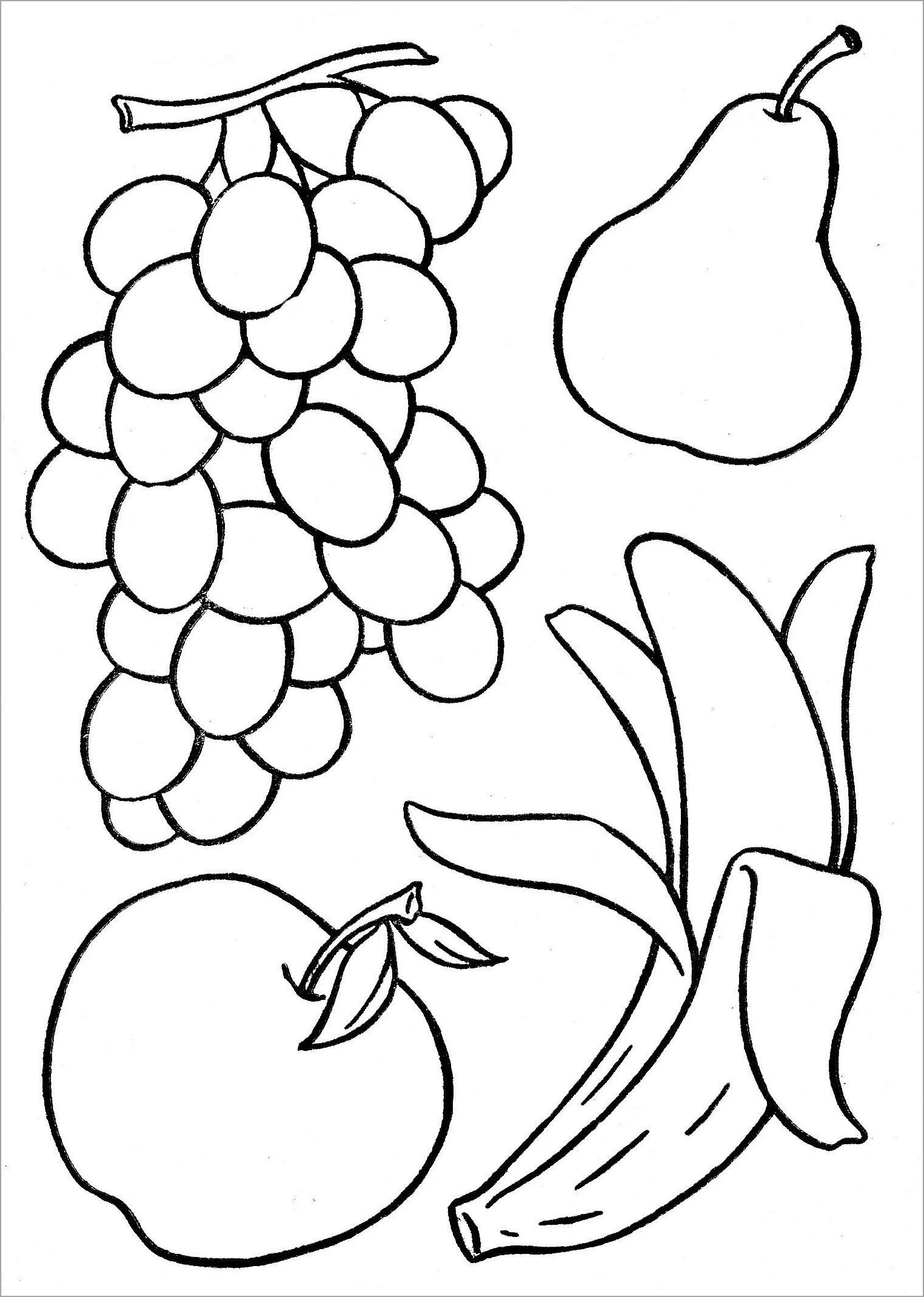 Tranh tô màu các loại hoa quả