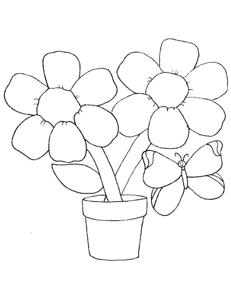Tranh tô màu chậu hoa đep