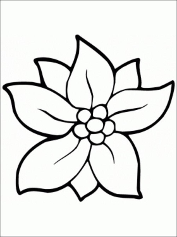 Tranh tô màu đơn giản nhất về hoa