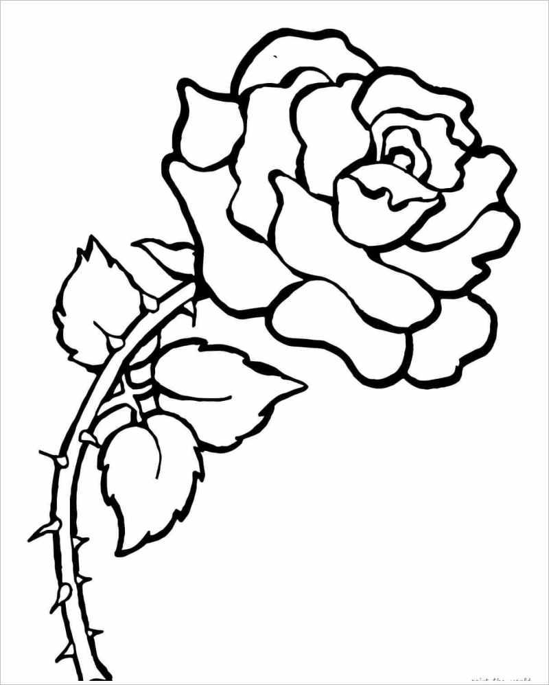 Tranh tô màu hình ảnh hoa hồng đẹp nhất