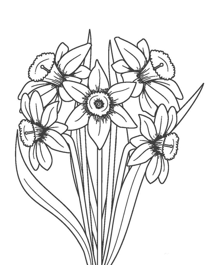Tranh tô màu hình hoa đơn giản nhất cho bé