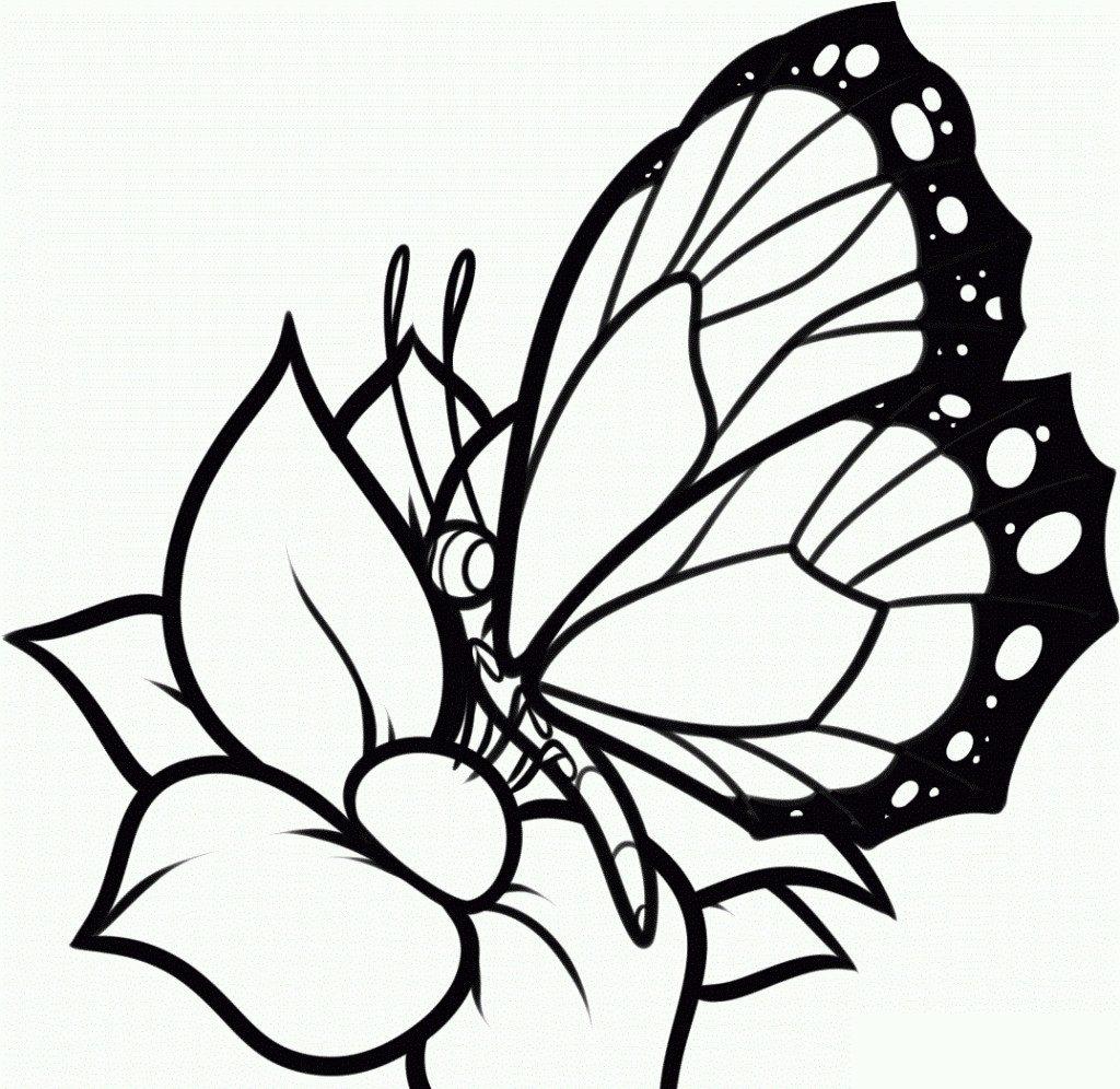 Tranh tô màu hoa bướm đơn giản nhất cho bé tập tô