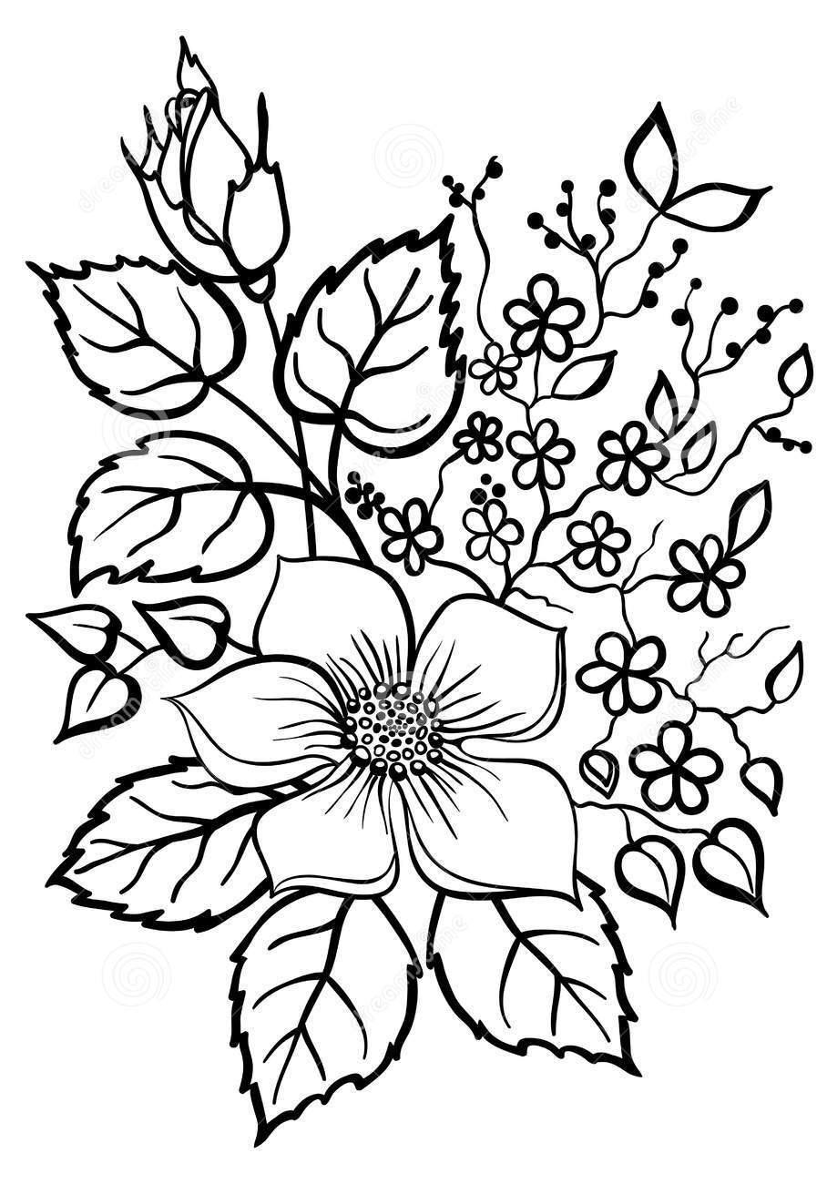 Tranh tô màu hoa đẹp