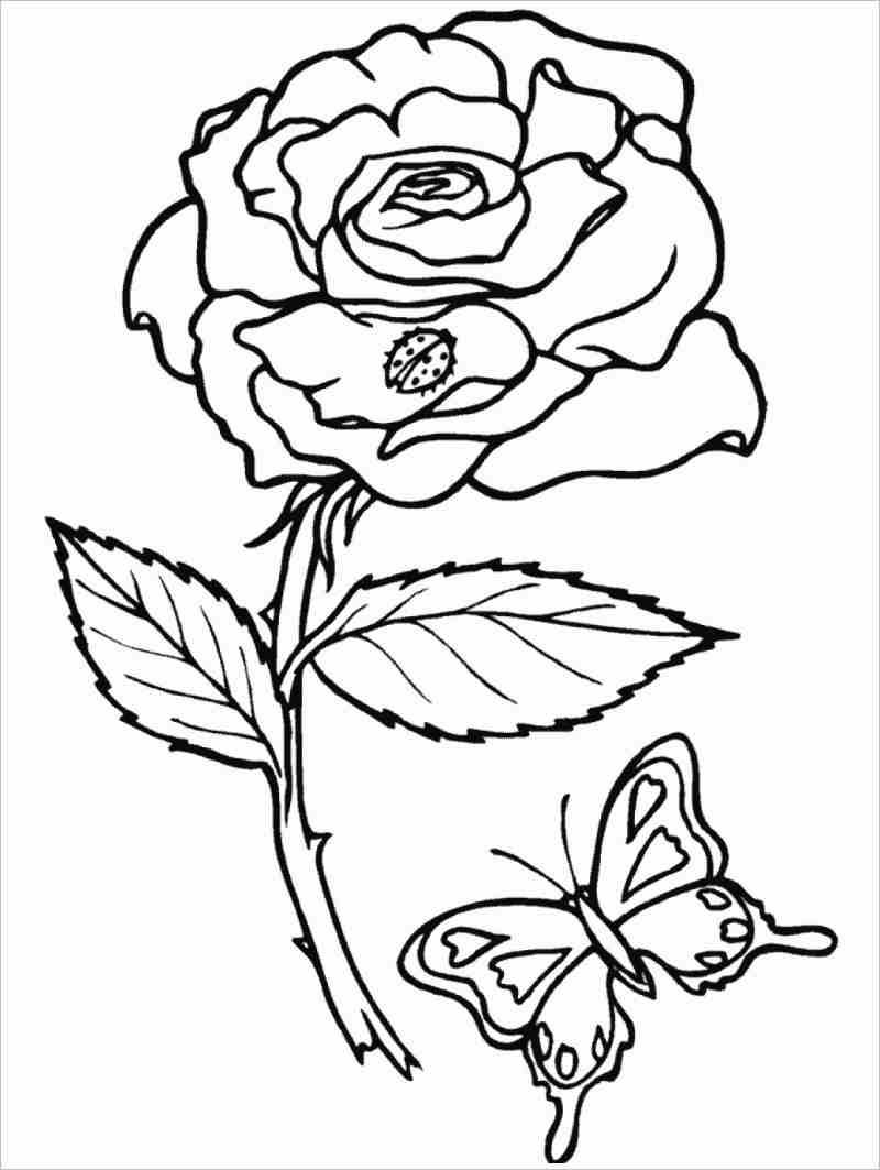 Tranh tô màu hoa hồng đẹp