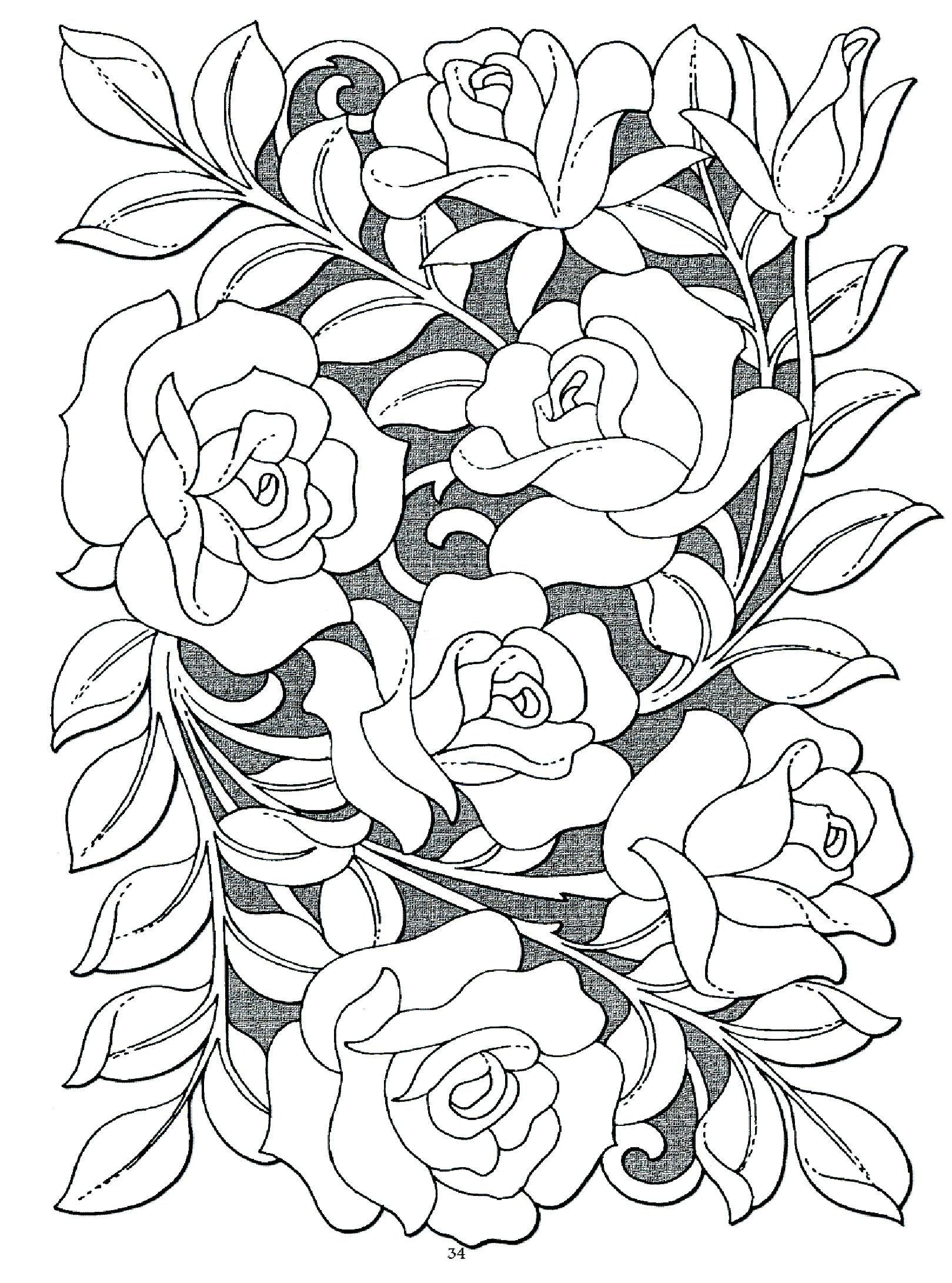 Tranh tô màu hoa hồng nghệ thuật đẹp nhất