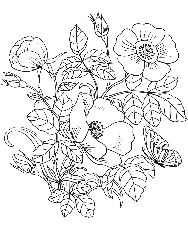 Tranh tô màu hoa lá mùa xuân đẹp nhất