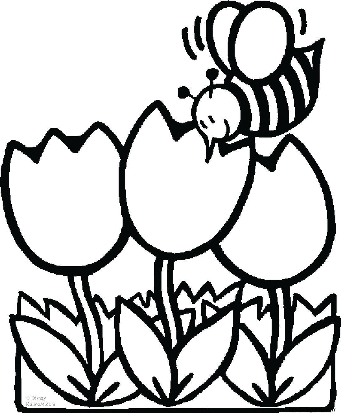 Tranh tô màu hoa tulip đẹp nhất cho bé
