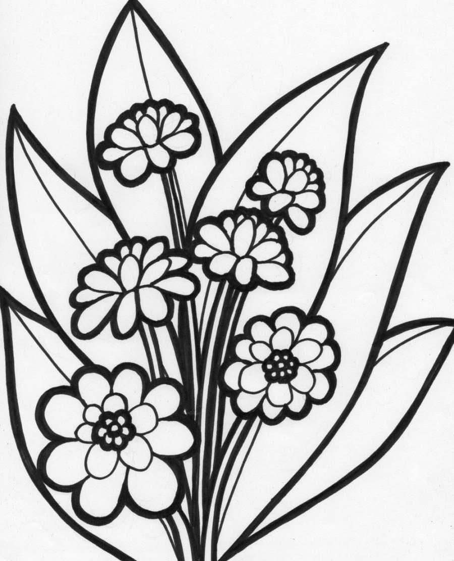 Tranh tô màu khóm hoa đẹp