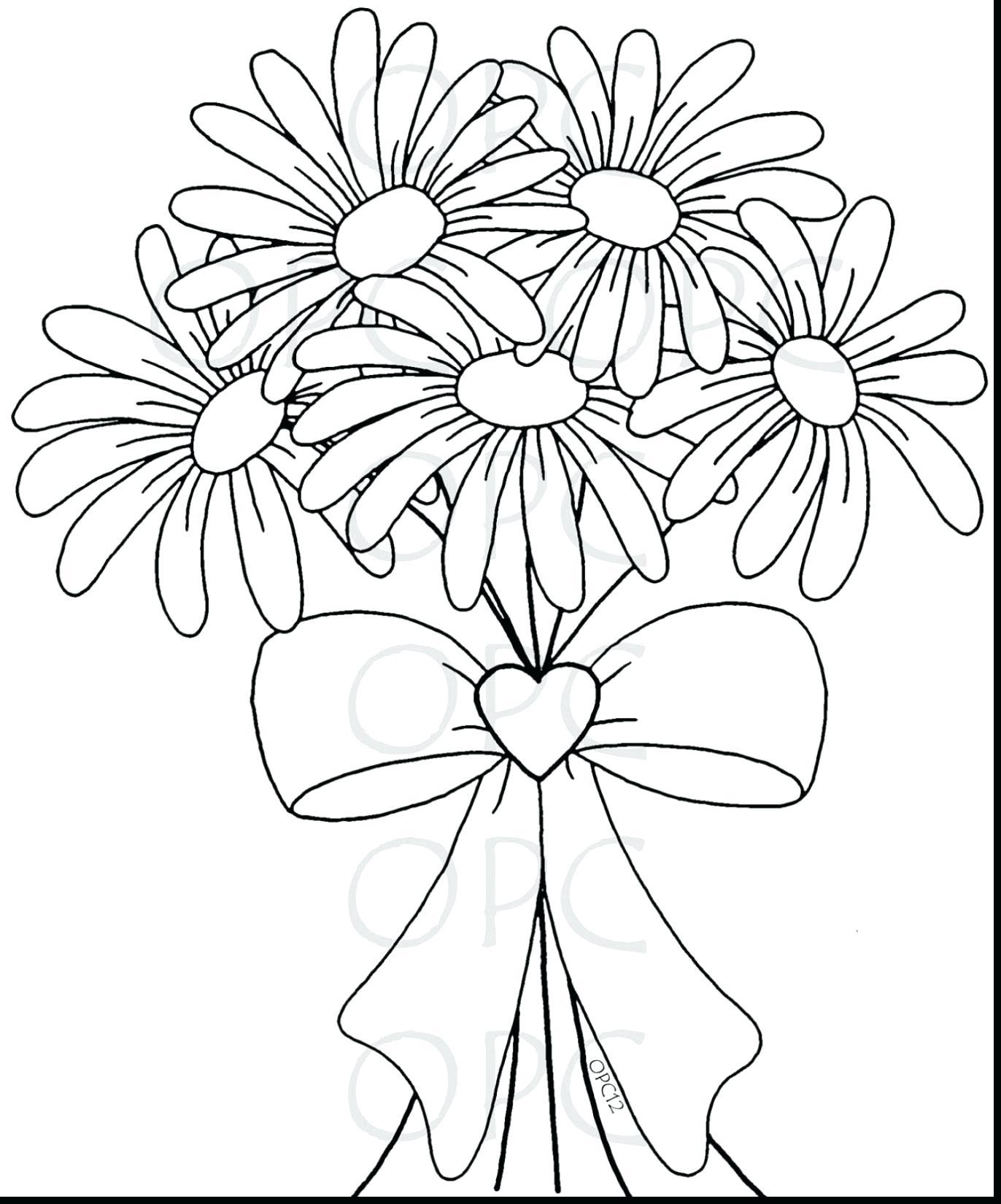 Tranh tô màu vườn hoa đẹp nhất