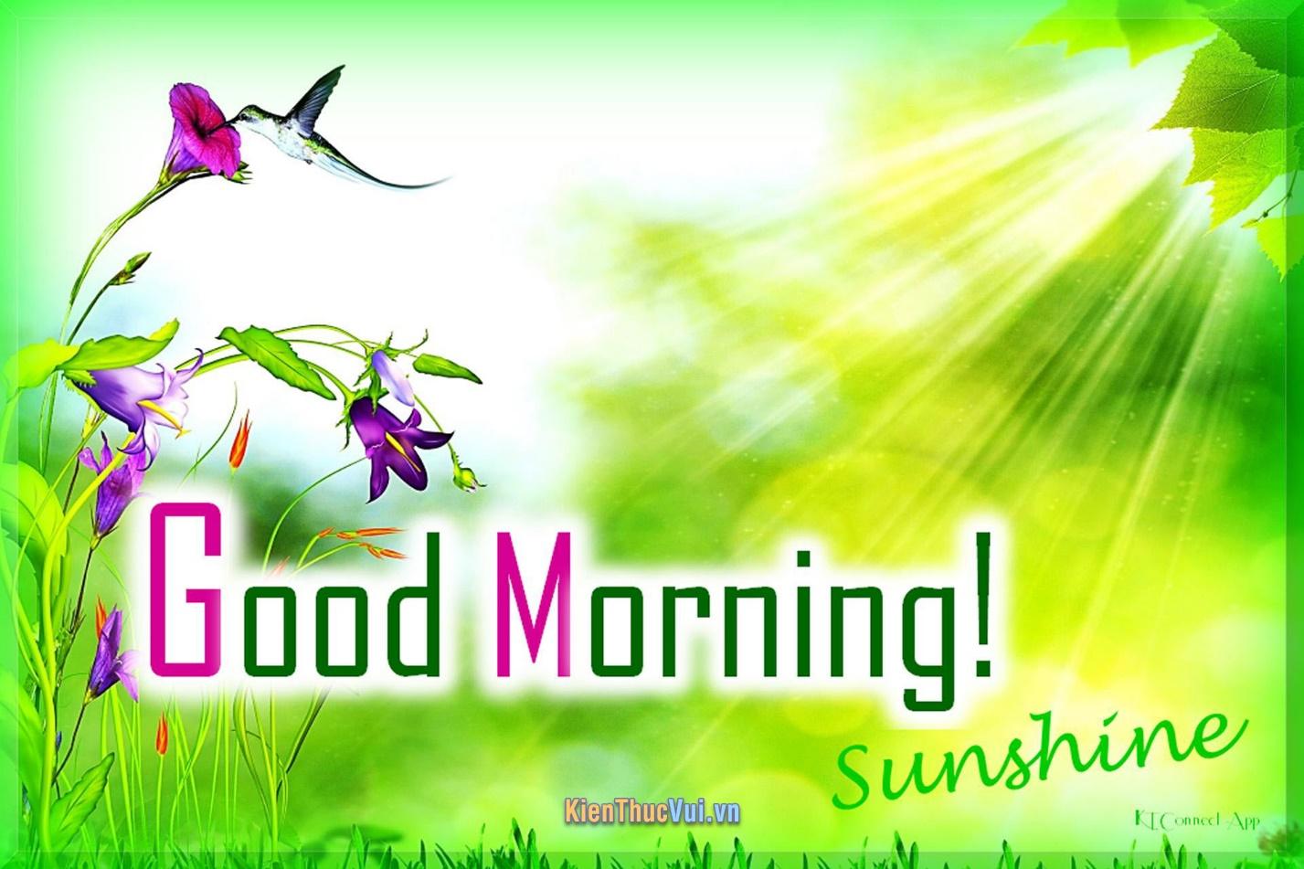 Hãy nhận một món quà đơn giản của anh vào mỗi buổi sáng