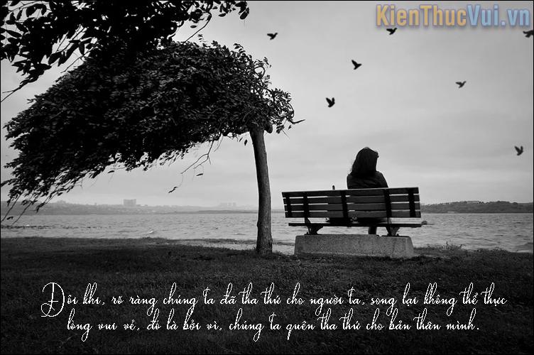 Đôi khi, rõ ràng chúng ta đã tha thứ cho người ta, song lại không thể thực lòng vui vẻ