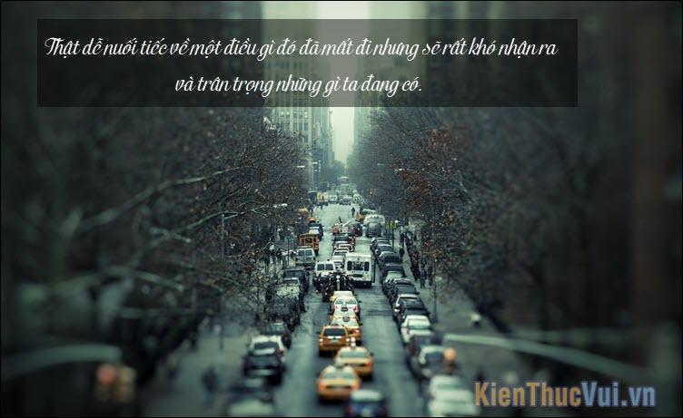 Thật dễ nuối tiếc về một điều gì đó đã mất đi nhưng sẽ rất khó nhận ra và trân trọng những gì ta đang có