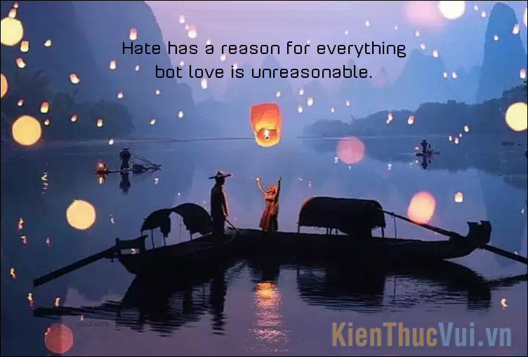 Hate has a reason for everything bot love is unreasonable