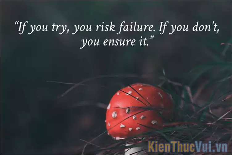 If you try, you risk failure If you don't, you ensure it
