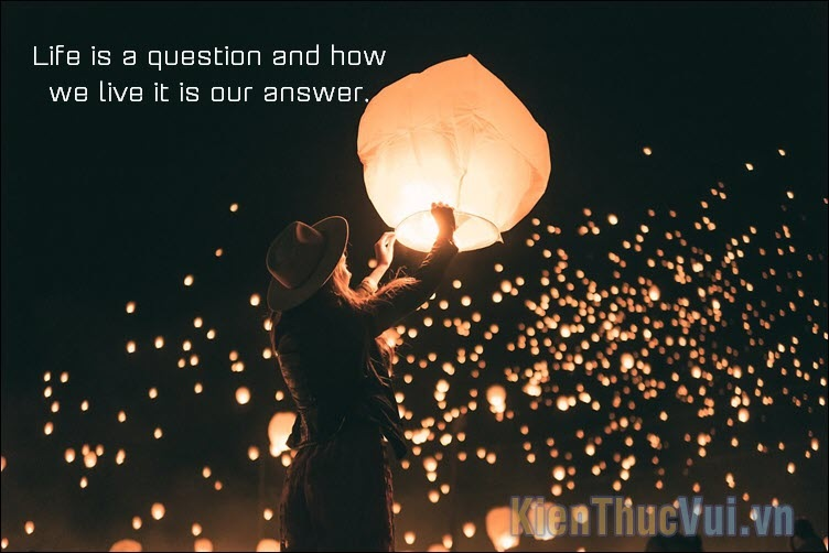 Life is a question and how we live it is our answer
