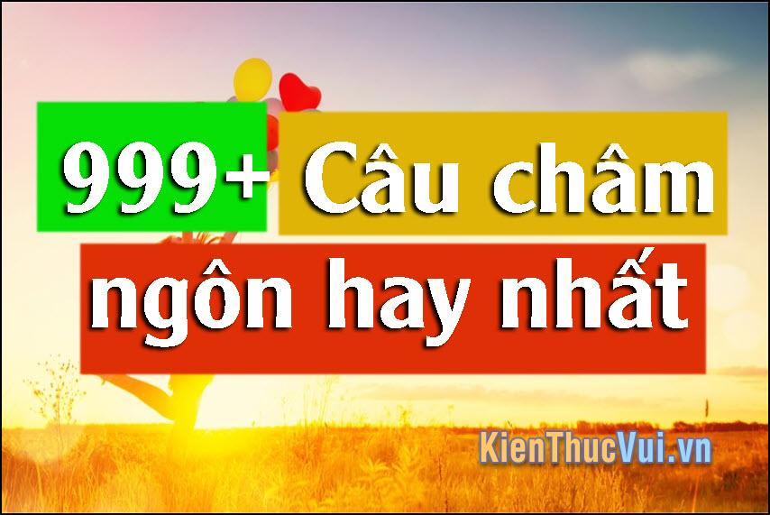 999+ Câu châm ngôn hay nhất