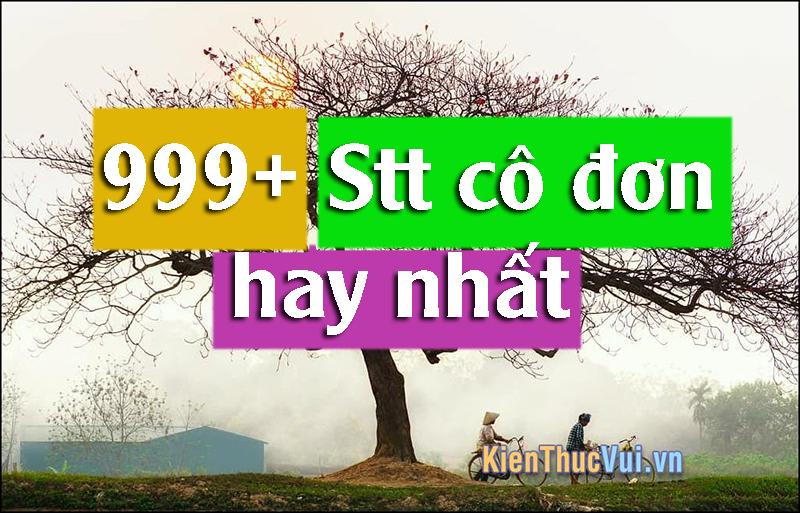 999+ Stt cô đơn hay nhất