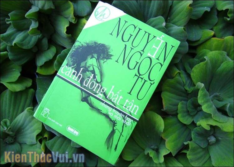 Cánh đồng bất tận – Nguyễn Ngọc Tư