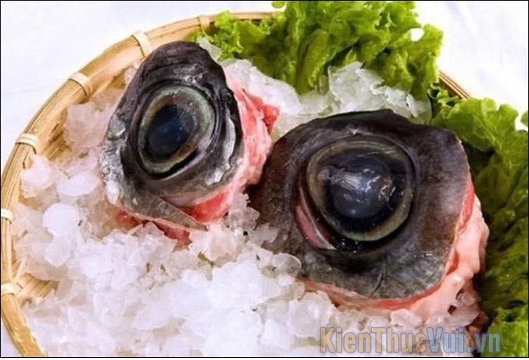 Mắt cá ngừ - Nhật Bản