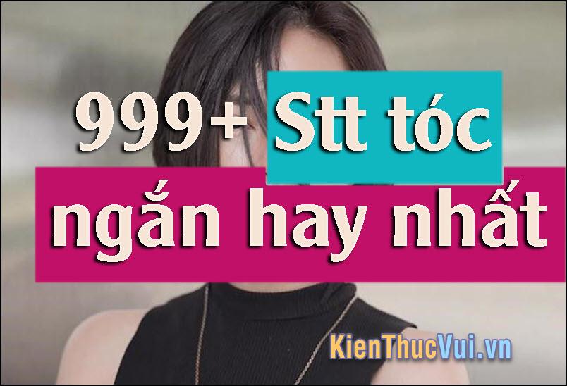 999+ Stt tóc ngắn hay nhất