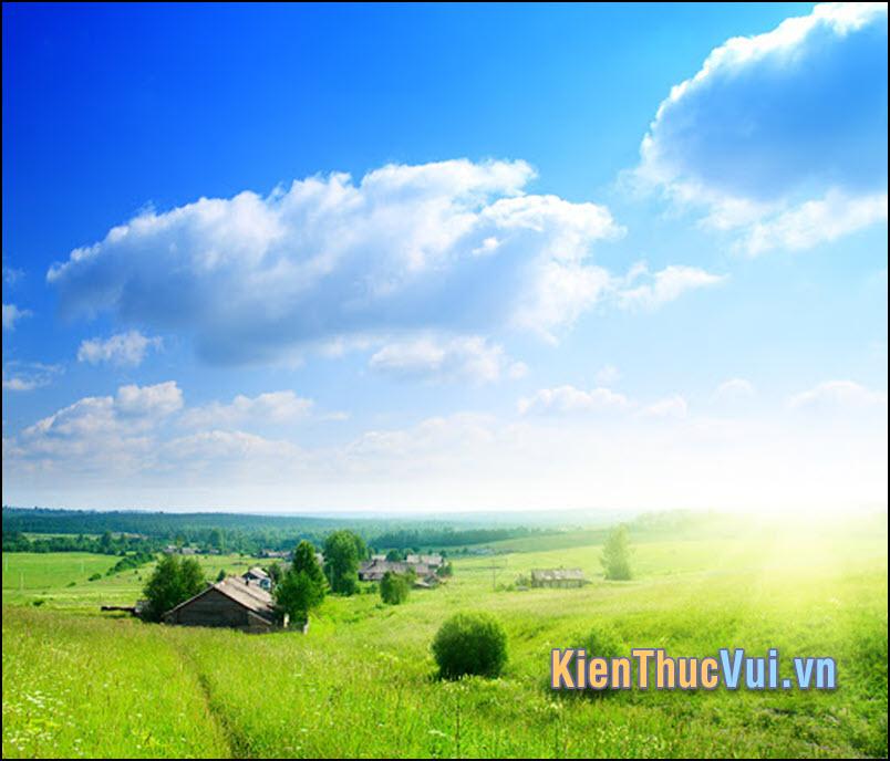 Chúc anh buổi sáng ấm áp và ngày mới thật tuyệt nha