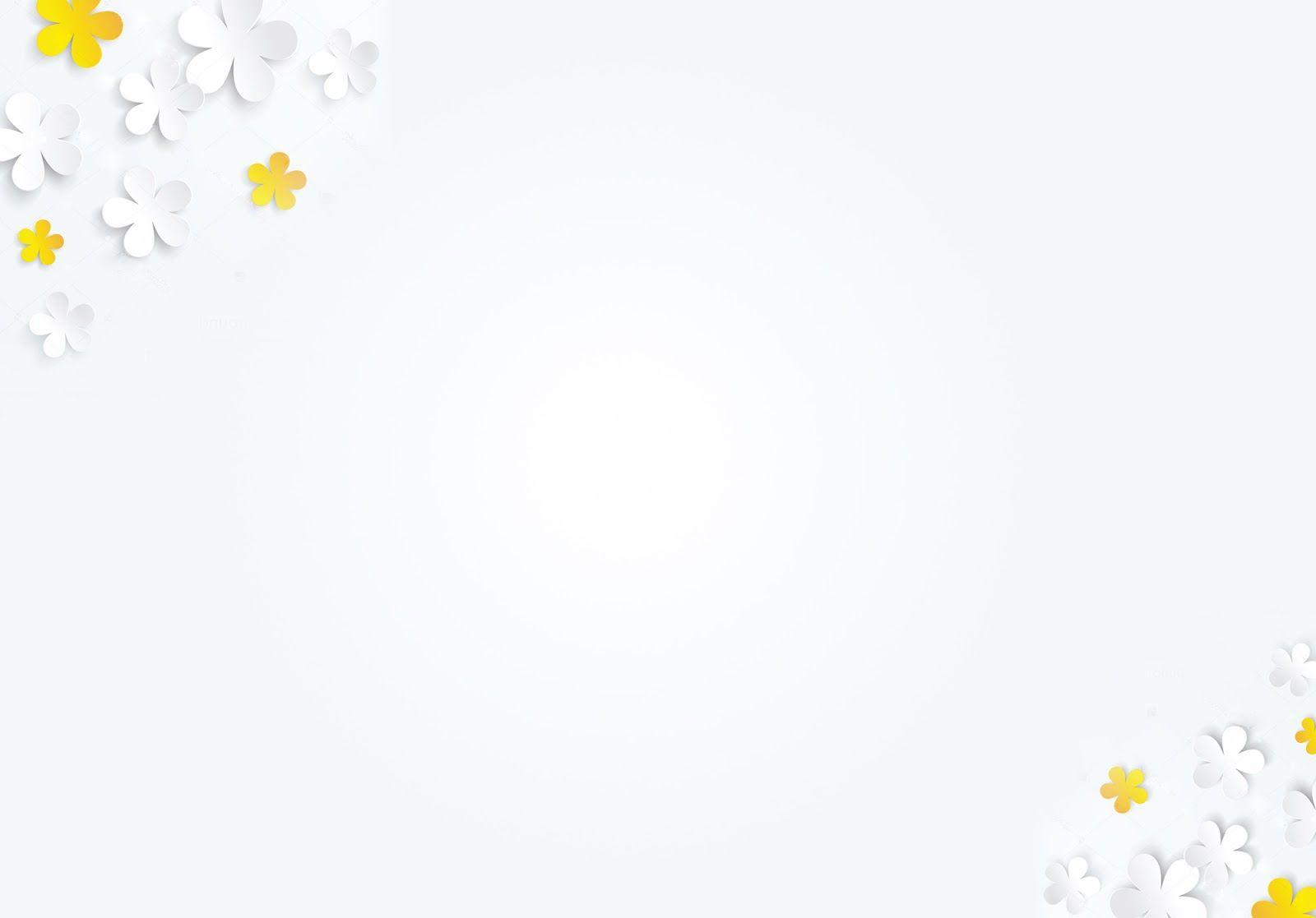 Hình nền slide màu trắng