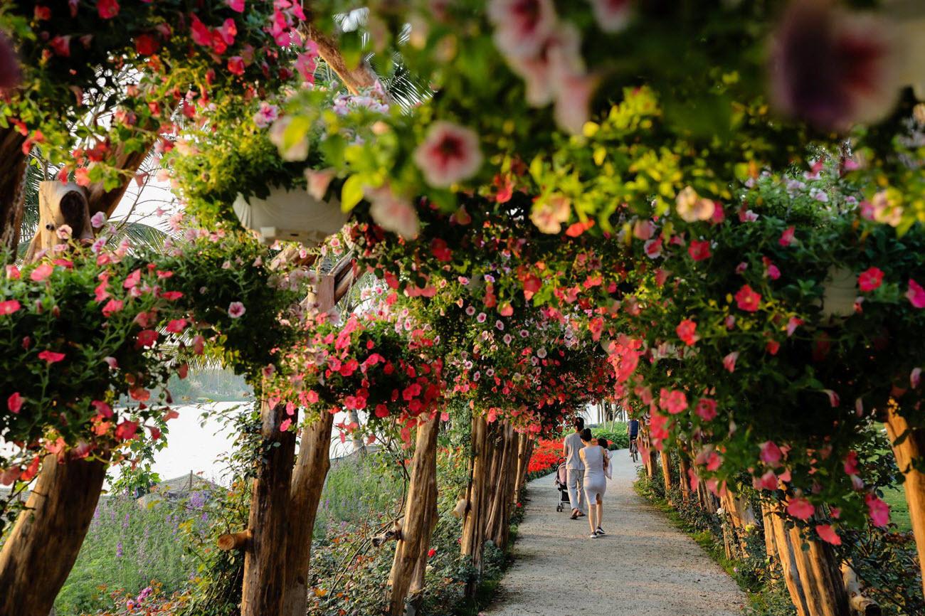 Ảnh lễ hội hoa mùa xuân