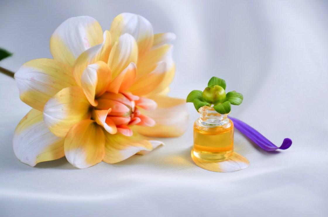 Tranh spa hoa cúc vàng treo tường