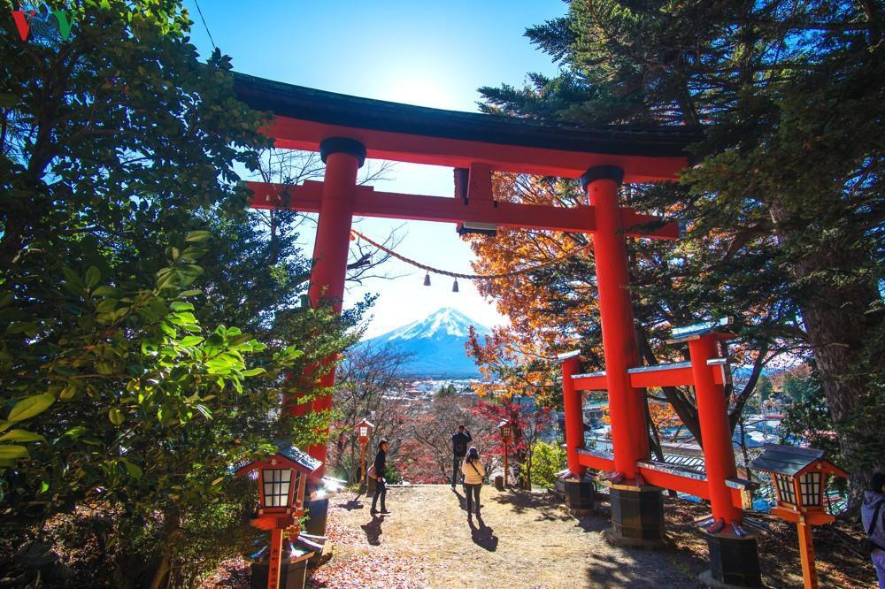 Ảnh cổng trời dưới chân núi Phú Sĩ đẹp tuyệt