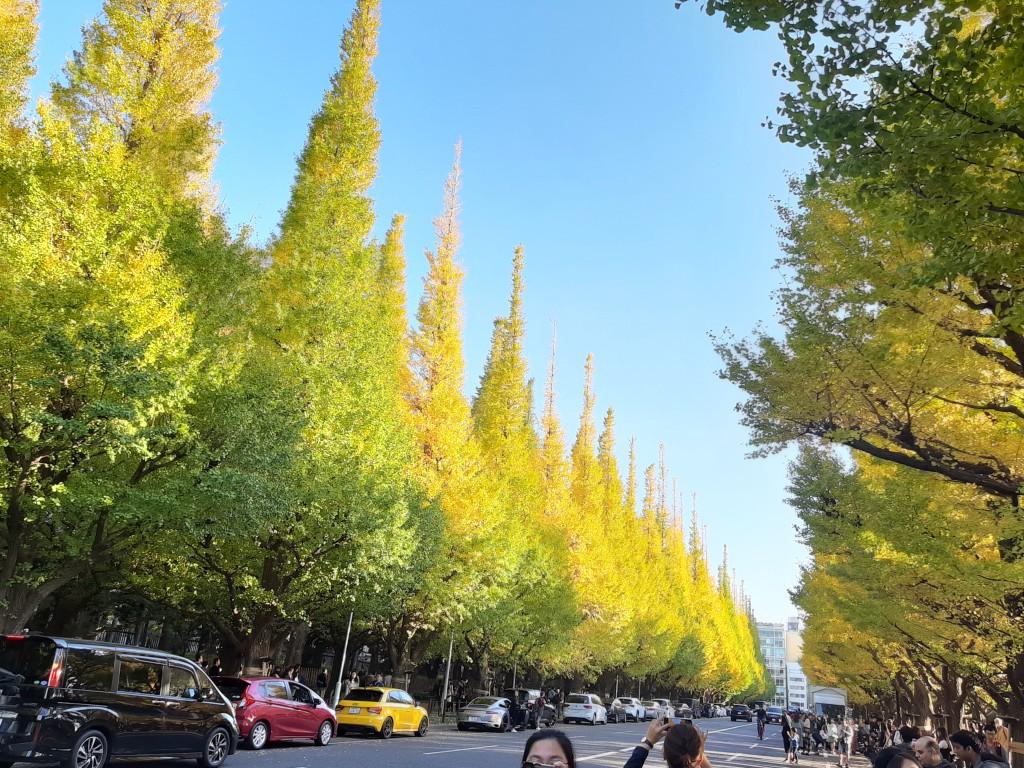 Ảnh đường phố Nhật Bản chớm thu