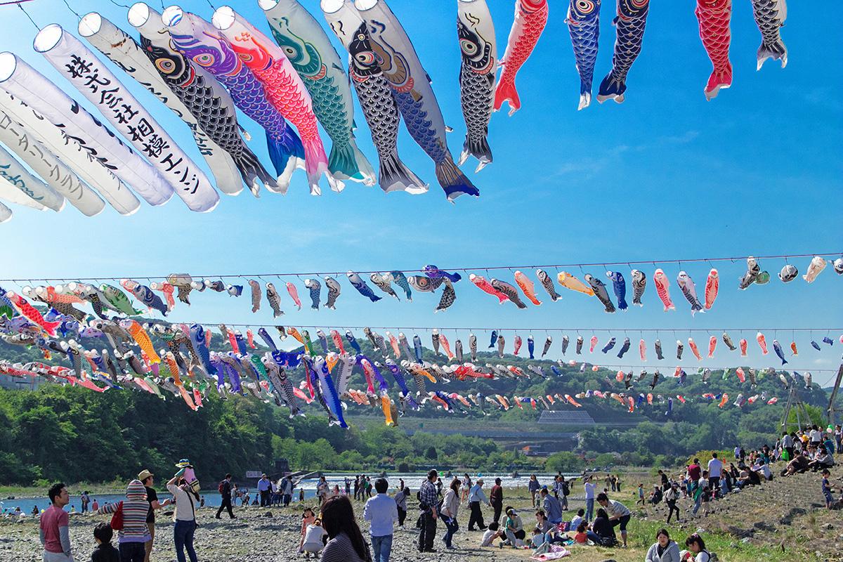 Ảnh lễ hội cá chép Nhật Bản
