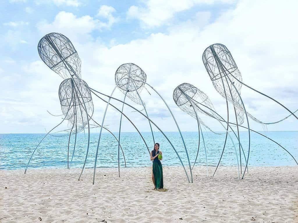 Ảnh sứa bay trên trời chỉ có ở Phú Quốc