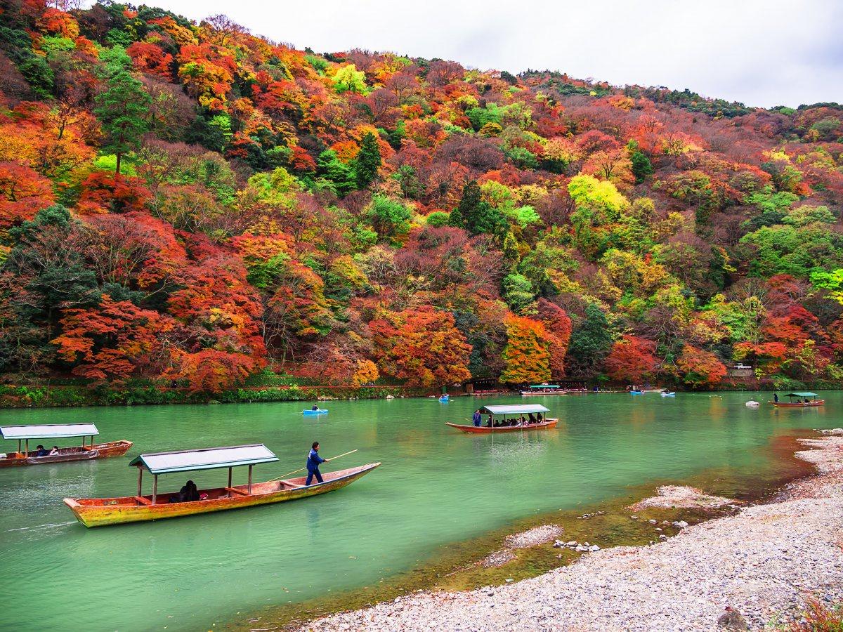 Ảnh vẻ đẹp yên bình của Kyoto Nhật Bản - thành phố du lịch tuyệt nhất thế giới