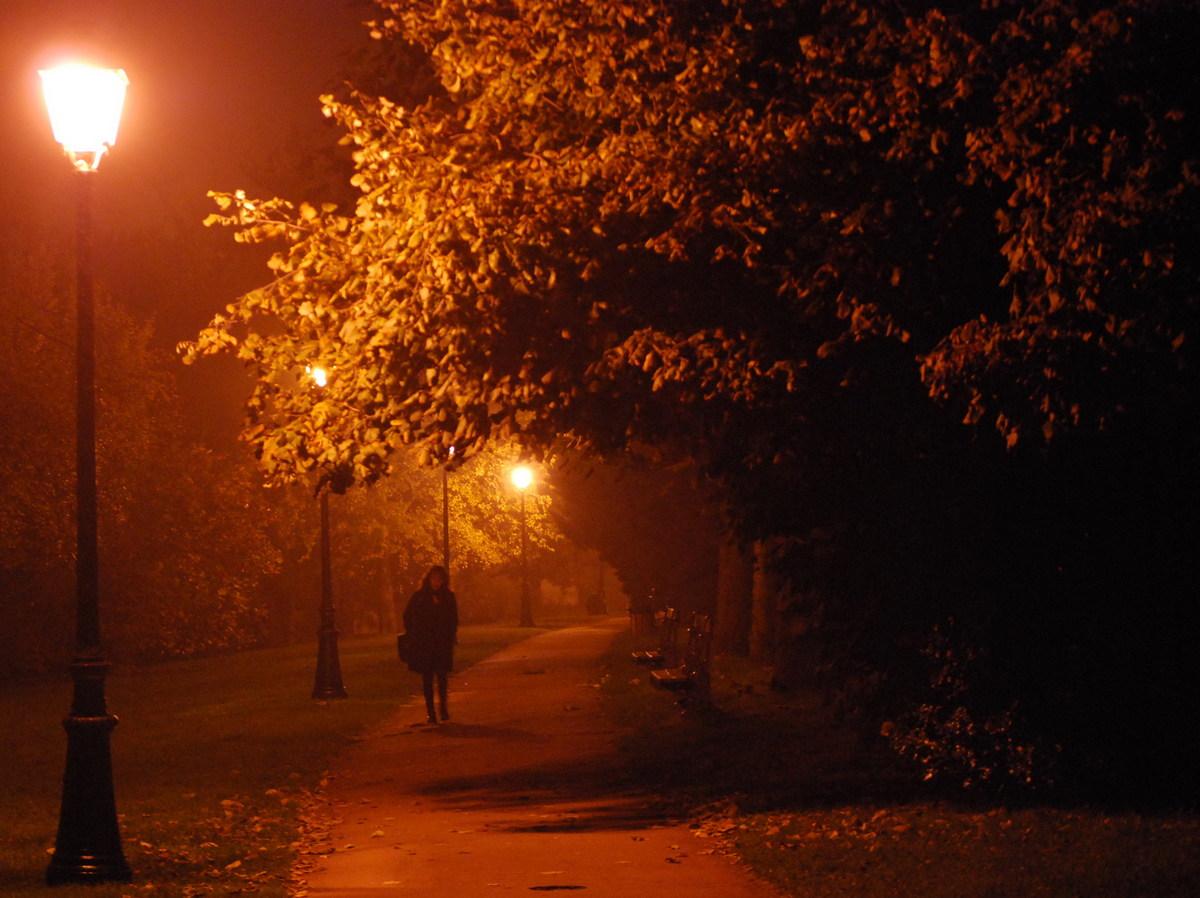 Ảnh lang thang bước trong đêm