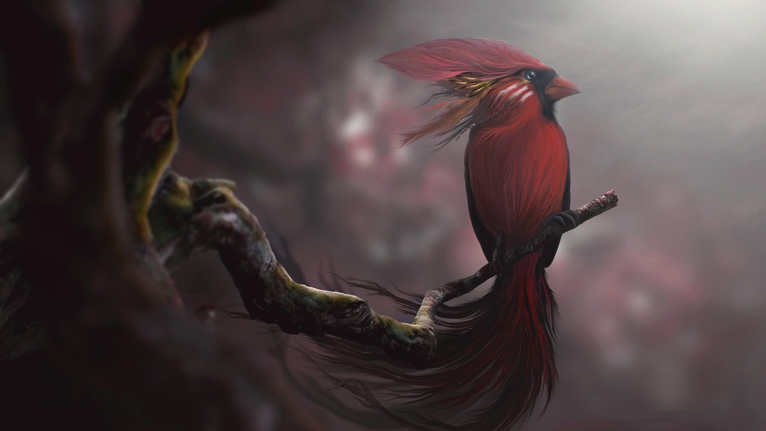 Bird Art Wallpapers