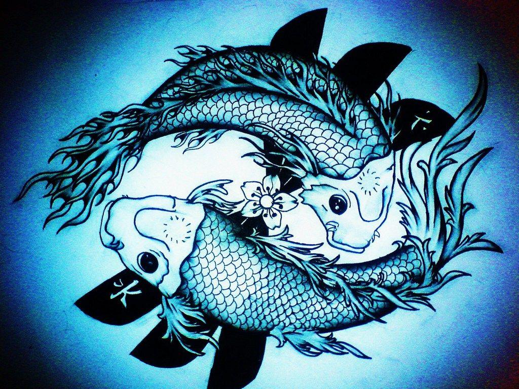 Hình nền con cá chép