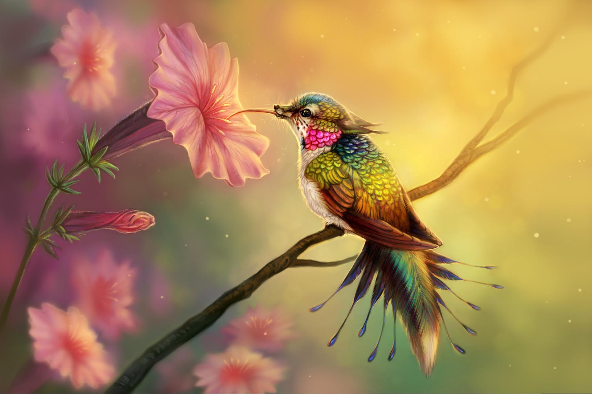 HÌnh nền con chim đang hút mật đẹp nhất