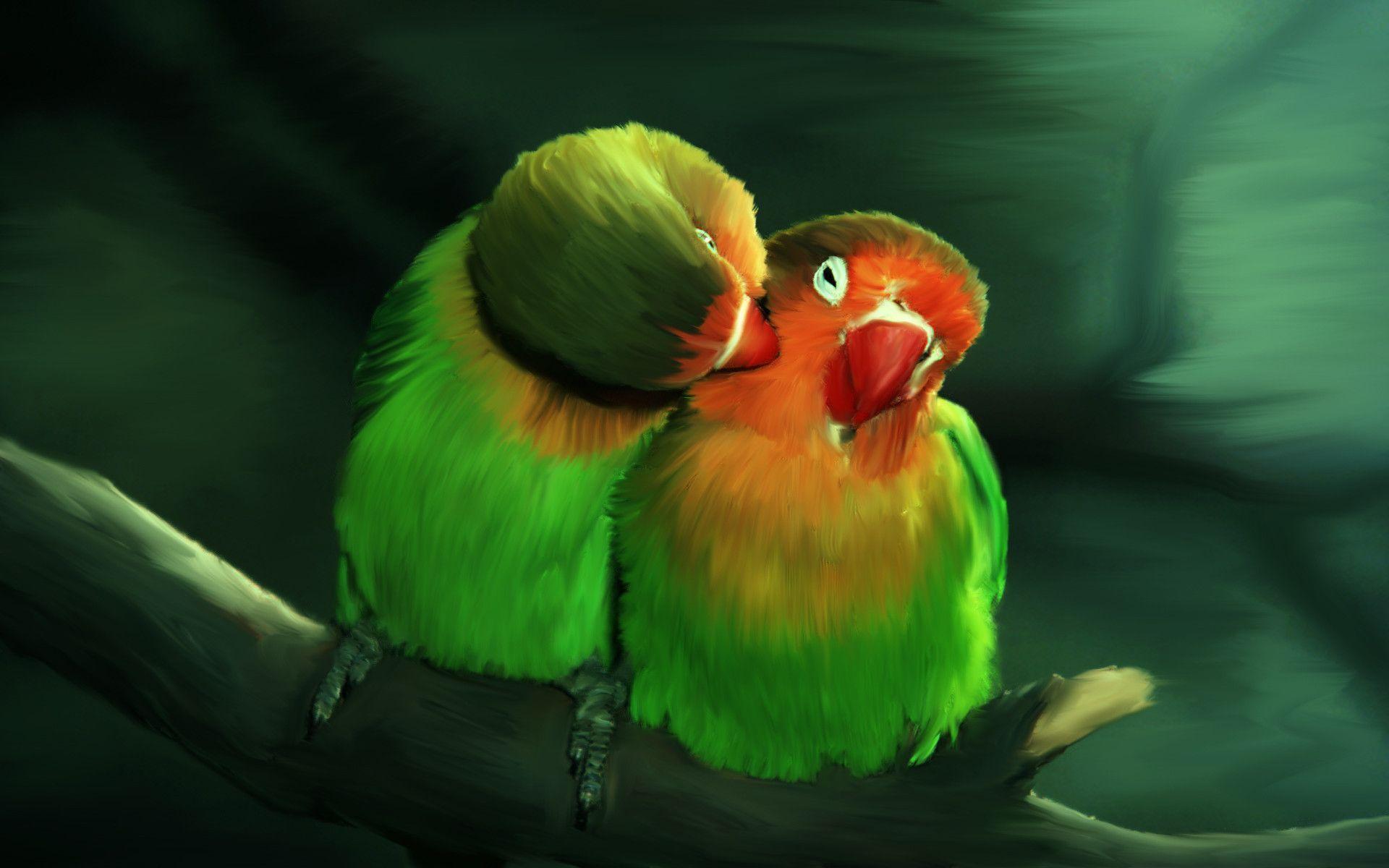 Hình nền đôi chim đẹp