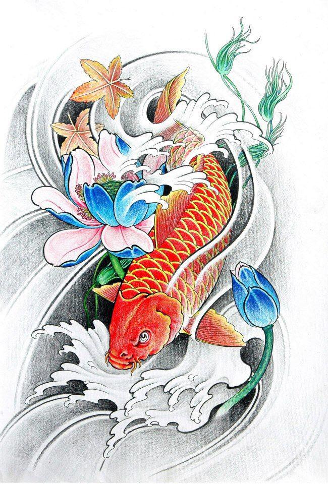Hình vẽ cá chép hóa rồng làm hình nền điện thoại
