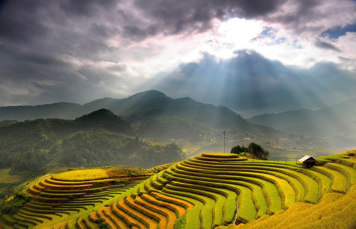 Hình ảnh ruộng bậc thang đẹp, thơ mộng