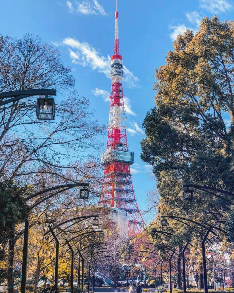 Ảnh tháp Tokyo mùa hoa anh đào