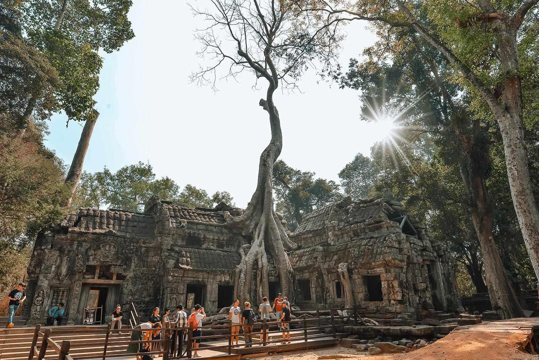 Ảnh toàn cảnh ngôi đền Ta Prohm