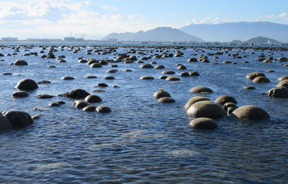 Hình ảnh bãi san hô lộ thiên ở Ninh Thuận