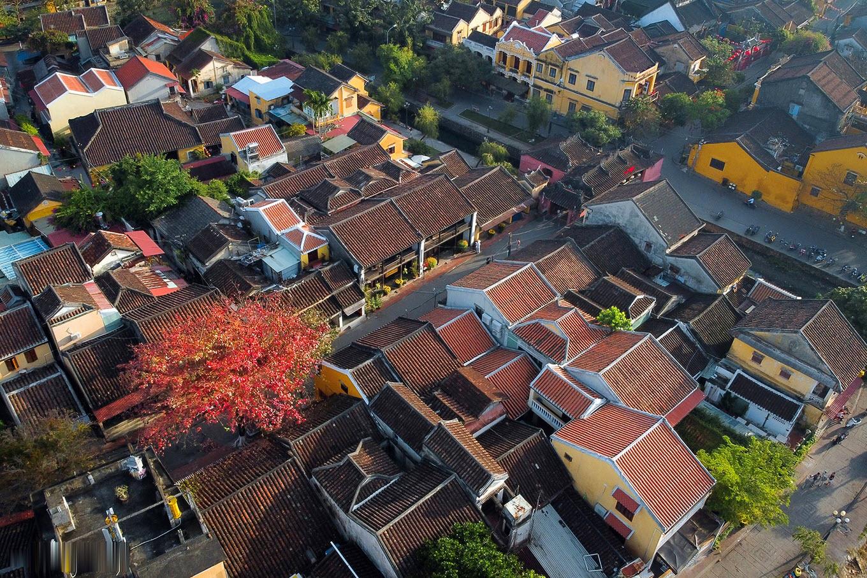 Hình ảnh Hội An mùa cây bàng lá đỏ