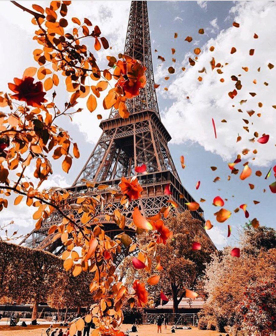 Hình ảnh tháp Eiffel mùa thu đẹp