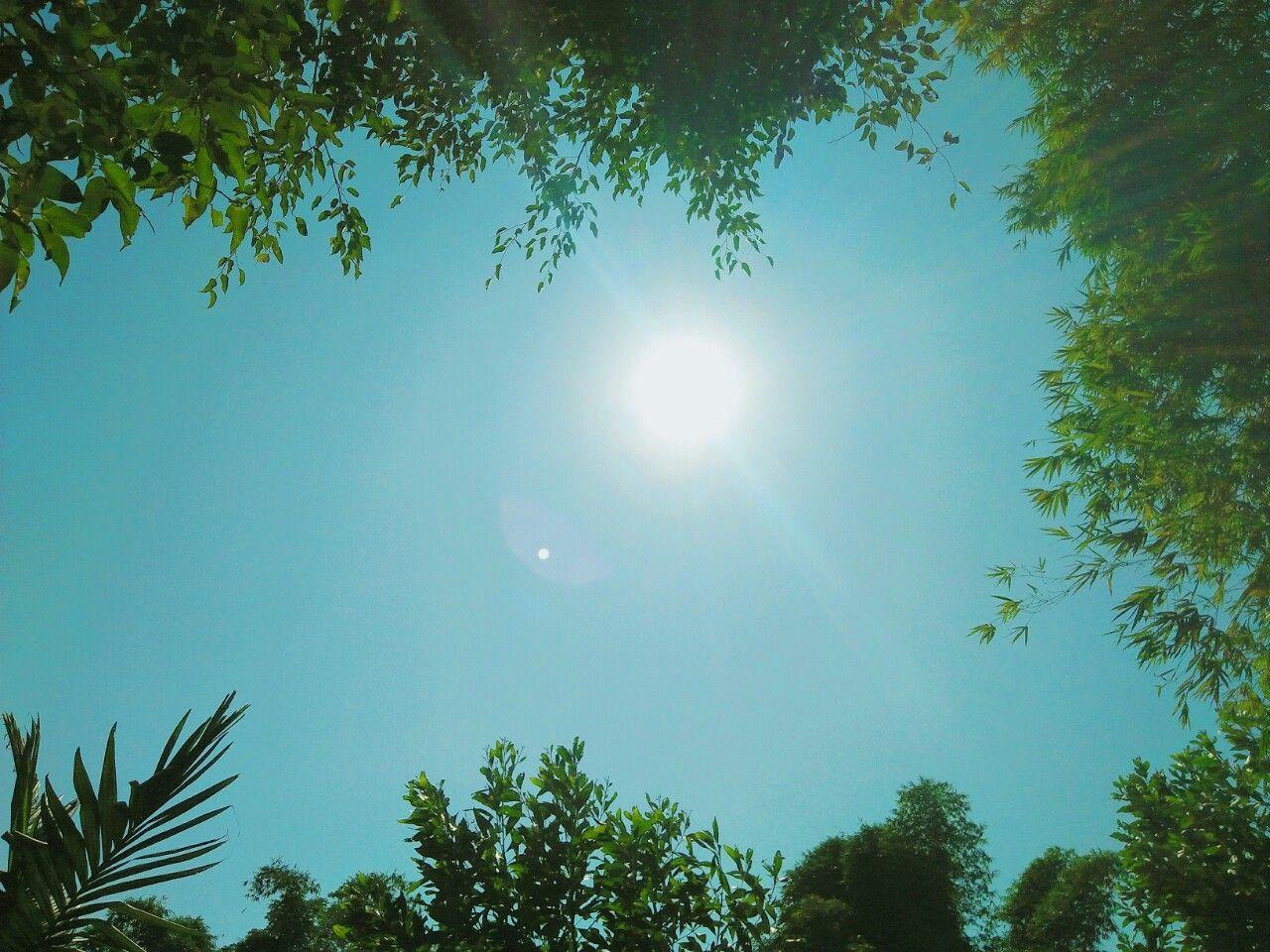 Hình ảnh đẹp nhất về trời nắng