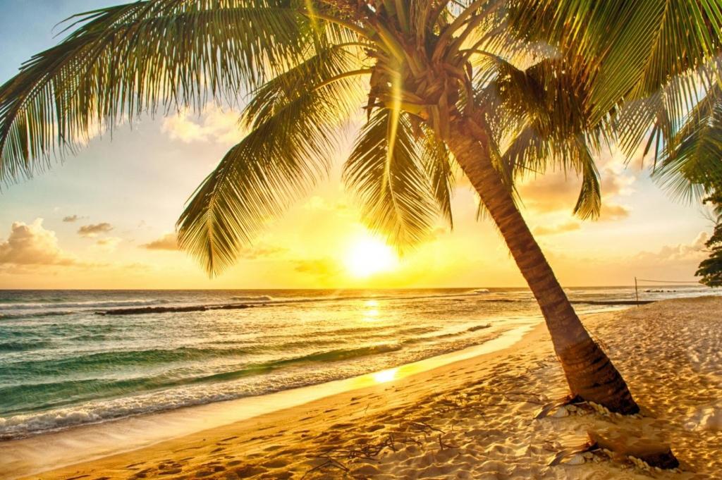 Hình ảnh trời nắng ở bãi biển