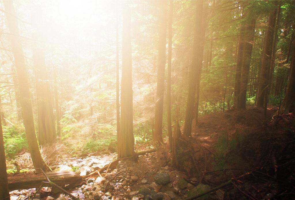 Hình ảnh trời nắng ở trên núi