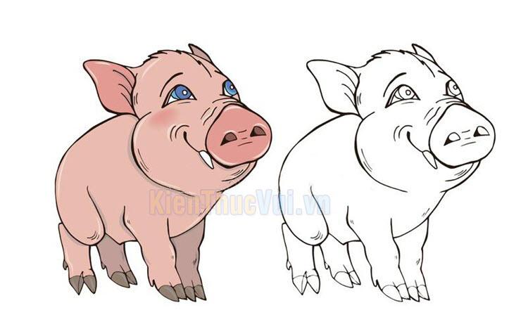Tranh tô màu con lợn